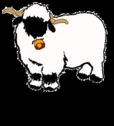 Valais Blacknose Sheep Association of North America